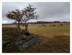 Das entsiedelte Erzgebirge (Norbert Kaiser) Tags: ryžovna seifen sejfy erzgebirge oremountains krušnéhory kantorfelsen aussicht erzgebirgskamm vertreibung landschaft landscape tschechien tschechischerepublik čechy czechrepublic böhmen nordböhmen bohemia smartphonephotography googlepixel3xl