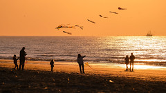 Let's fly together (Drummerdelight) Tags: seaside seascape sunlight sunset sun shillouettes peoplewatching people intothesun