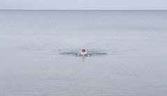 20191017_190354 swimming b (wos---art) Tags: bildschichten schwimmen ostsee leer allein