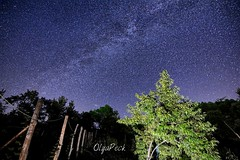 21 (OlyaPeck) Tags: astrophoto astrophotography astronomy stars space night milkyway
