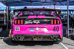 _DSC0679 (Ray's Motorsports Page) Tags: racing motorsports autosport endurance race car