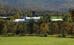 Nestled In The Valley (Diane Marshman) Tags: farm rural barn silo buildings hay field country fall scene scenic autumn scenery trees leaves pine red orange yellow green color view mountain valley pa pennsylvania nature
