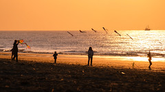 Let's fly together D (Drummerdelight) Tags: seaside seascape sunlight sunset sun shillouettes peoplewatching people intothesun