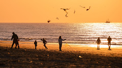 Let's fly together B (Drummerdelight) Tags: seaside seascape sunlight sunset sun shillouettes peoplewatching people intothesun