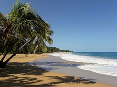 The best beach on Guadeloupe! (rdtoward21) Tags: beach guadeloupe