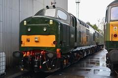 """British Railways Green Class 37/5, D6851 & Class 47/8's, D1935 """"Roger Hoskins MA 1925 - 2013"""" & D1924 """"Crewe Diesel Depot"""" (37190 """"Dalzell"""") Tags: br britishrailways green twotonegreen ee englishelectric type3 growler tractor class37 class375 brush sulzer type4 duff spoon class47 class478 d6851 37667 37151 d1935 rogerhoskinsma19252013 47805 47650 47257 d1924 crewedieseldepot 47810 47655 47247 lsl locomotiveserviceslimited dieseldepot crewe"""