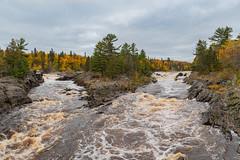 Double Vision (Greg Riekens) Tags: autumn usa landscape fallcolors jaycookestatepark river nikond500 rocks stlouisriver statepark trees midwest fall fallleaves minnesota