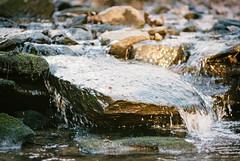 Falling off the Rock (Joe_R) Tags: rachelcarsonconservationpark iso400 pentaxk1000 analog fujisuperia film brookeville maryland unitedstatesofamerica landscape water stream waterfall