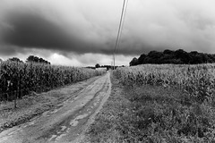 iconic (the ripped bystander) Tags: blackwhite countryside barn sky road