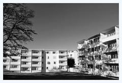 Bois-gentil (overthemoon) Tags: bw grass architecture schweiz switzerland apartments suisse lausanne svizzera vaud romandie boisgentil düsseldorfschool trees utata:project=dusseldorf