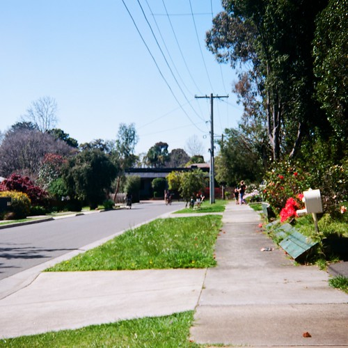 Suburban power lines pole