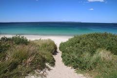 Huskisson Beach, Jervis Bay (RossCunningham183) Tags: huskisson jervisbay nsw australia pathtothebeach beach huskissonbeach sand sea water bay turquoise pointperpendicular