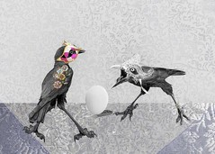 Party Crows (Tartan Ranga) Tags: raven crow birds corvid black fly feathers egg mask photography texture surreal abstract australian artphotography fun composite