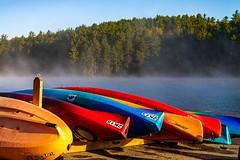 13_DSC8828 (doug.metcalfe1) Tags: 2019 algonquinoutfitters algonquinprovincialpark dougmetcalfe fall nature ontario opeongolake outdoor provincialpark fog kayak mist