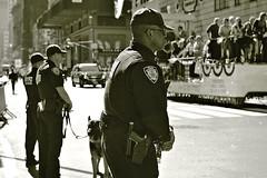 NYPD Columbus Day Parade (sjnnyny) Tags: