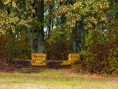 Comfortable place with a beautiful view (Dumby) Tags: landscape ilfov românia brănești autumn fall hilarious forest