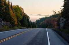 4_DSC8810 (doug.metcalfe1) Tags: 2019 algonquinprovincialpark dougmetcalfe fall hyw60 nature ontario outdoor provincialpark fallcolours fallleaves fog mist