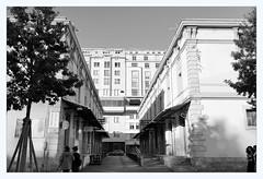 les marquises (overthemoon) Tags: düsseldorfschool bw switzerland suisse schweiz svizzera romandie vaud lausanne architecture flon terreaux ruedegenève utata:project=dusseldorf