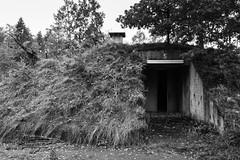 Bunker No 5 (michael_hamburg69) Tags: lostplace offthemap abandonedplace urbanexploration urbex phototourmit3daybeard3tagebart unterwegsmitchristian bunker bunkeranlage