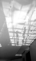 (von Calven Lee) Tags: leica leicam6 m6 rollfilm blackandwhite blackwhite bw 11306 summaron kodak100tmax