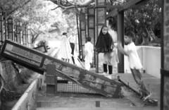 (von Calven Lee) Tags: 11114 leica leicam6 m6 rollfilm blackandwhite blackwhite bw kodak100tmax summilux 50mm