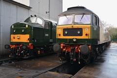 "British Railways Green Class 37/5, D6851 & Class 47/8, D1924 ""Crewe Diesel Depot"" (37190 ""Dalzell"") Tags: br britishrailways green twotonegreen ee englishelectric type3 growler tractor class37 class375 brush sulzer type4 duff spoon class47 class478 d6851 37667 37151 d1924 crewedieseldepot 47810 47655 47247 lsl locomotiveserviceslimited dieseldepot crewe"