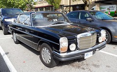 '69-'72 Mercedes-Benz 250 CE Automatic (Foden Alpha) Tags: mercedesbenz 250ce automatic w114 gm516j
