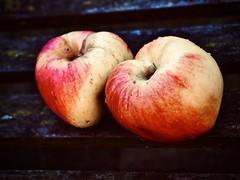 bellefleur (delnaet) Tags: appel pomme apple fruit bellefleur fantasticnature macrodreams