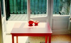 (Victoria Yarlikova) Tags: 35mm analog composition smallformat scanfromnegative scan zenit122 retro vintage film iso100 naturallight epsonperfectionv700 darkroom analogue pellicola analogica pomegranate composizione filmphotography analogphotography плёнка home melograno