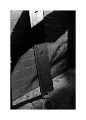 (billbostonmass) Tags: trix 400 ddx film 14ddx800min68f m6 50mm summicron epson v800 boston massachusetts chinatown