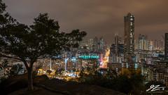 A Hint of Green (TVZ Photography) Tags: 169 quarryhill homantin lokmansunchuen kowloon hongkong tree city cityscape landscape night evening lowlight longexposure sonya7riii sony 1635mm sel1635gm