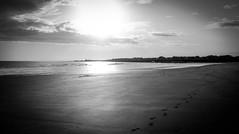 Sunrise . (wayman2011) Tags: colinhart fujifilm23mmf2lightroom5 fujifilmxe2s wayman2011 bw mono sunrise coast seascapes beach northumberland seahouses uk