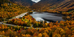 Artists Bluff, Franconia, NH (MikeWeinhold) Tags: artists bluff franconia new hampshire franconianotch white mountains fall foliage england