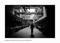 Easy life (Pollini Photo Laboratory) Tags: marcopollini polliniphotolabcom fotografiaurbana streetphotography leica leicamp summarit 35mm blackwhite bianconero monocrome paris france