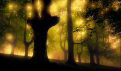 ARGIA (juan luis olaeta) Tags: paisajes landscape nature fog forest basoa pagoa laiñoa nieblas bosque raw photoshop lightroom canon basquecountry euskalherria
