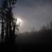 Les jours sombres et brefs arrivent...