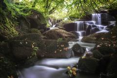 Breizh nature (philippe MANGUIN photographies) Tags: huelgoat finistère bretagne foret riviere
