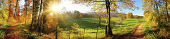 Gorgeous landscape panorama in autumn (decocentrum) Tags: panorama fall nature idyll scenery sun path track colourful sky blue gold leafs agriculture pasture hiking tranquil flora wood view sunrays poster colors gorgeous hill landscape autumn meadow idyllic scenic scene rural trail colorful trees green yellow leaves autumnal grass trekking recreation field forest panoramic sunshine rays seasonal beautiful germany
