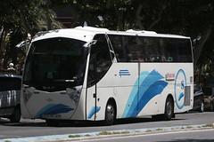 8795 FBG, Avenida Mediterraneo, Benidorm, May 22nd 2017 (Southsea_Matt) Tags: 8795fbg daf acostense avenidamediterraneo benidorm spain may 2017 spring canon 80d bus coach autocar vehicle