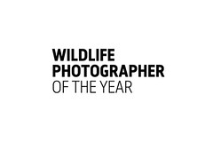 These are the winners of the 2019 Wildlife Photographer of the Year competition (Lisa Poor) Tags: architecturephotography blackandwhitephotography bnwphotography bookphotography canonphotography concertphotography dogphotography dronephotography fashionphotography filmphotography foodphotography indianphotogray landscapephotography macrophotography mobilephotography naturephotography nightphotography photography photographyeveryday photographyislife photographyislifee photographylover photographylovers photographysouls portraitphotography streetphotography toyphotography travelphotography weddingphotography wildlifephotography