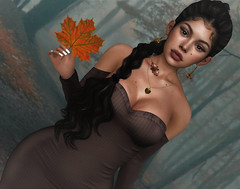 Stroll In The Woods (Sparkle Mocha) Tags: blogging blogger blog blogg secondlife firestorm 3d gamer slhair genushead mesh maitreya fashion skinnery maxi dress acorn leafs fall autumn blackslhair braid ponytail analog dog epiphany event kaithleens knit mid adhair