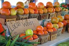 Farmstand fresh.... (Joe Hengel) Tags: farmstandfresh farm tomatoes corn vegetables farmstand delaware de sussexcounty woodlandde woodland