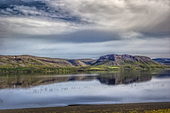 Gilsfjörður (Wim van de Meerendonk, loving nature) Tags: iceland west mountainscape mountain monumental nature clouds cloud cloudscape green hills landscape light outdoors outdoor panorama rock rocks sony sky sun scenic valley wimvandem abigfave