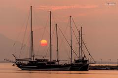 Golden sunsets (t.valilas) Tags: evia euboea euboia artaki neaartaki newartaki sea sunset sun ship goldenhour outdoor seascape