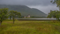 like a painting (Andrea Gambadoro) Tags: yellow scotland painting raining rai kilchurn castle water tree field view views cape landscape rain ruin monument tourist travel photography photographer scenario clouds mountain trees canon 5d markiii wide lens river