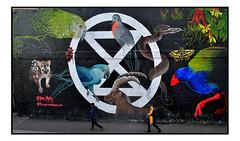 STREET ART by JANE MUTINY. (StockCarPete) Tags: janemutiny streetart londonstreetart extinctionrebellion villageundergroundwall london uk animalart shoreditchart shoreditch endangered mural