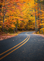 An Autumn Drive (Dave Hoefler) Tags: michigan road autumn autumncolors fall fallcolors nature trees seasons vertical nopeople outdoors canoneos5dmarkiii canon135mmf2lusm midwest