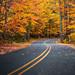An Autumn Drive