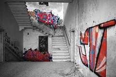 GraffArts (francesco.fabbian93) Tags: graffiti art abbandono manicomio inside inquitante poveglia isoladipoveglia venezia lagunaveneziana kayak luoghiabbandonati mistero