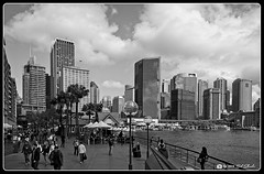 Circular Quay View (Bob Shrader) Tags: olympuspenf olympusmzuikodigitaled12100mmf40ispro 12mm f71 1800sec 200iso raw microfourthirds mft m43 mirrorless oceania australia newsouthwales sydney circularquay nature water harbor sydneyharbor people pedestrians tourists transportation walkway ferry boat plant tree sky clouds landmarks skyline building architecture structure officebuilding penf zoomlens mzuiko12100mmf40ispro olympusmzd12100mmf40ispro exterior outdoors cityscape wideshot on1 photoraw2020 preset bwfilm bf13kodakpanatomicx32 blackandwhite bw blackwhite monochrome fauxfilm bwnegativefilm monotone postprocessing photoborder photoedge photoframe style
